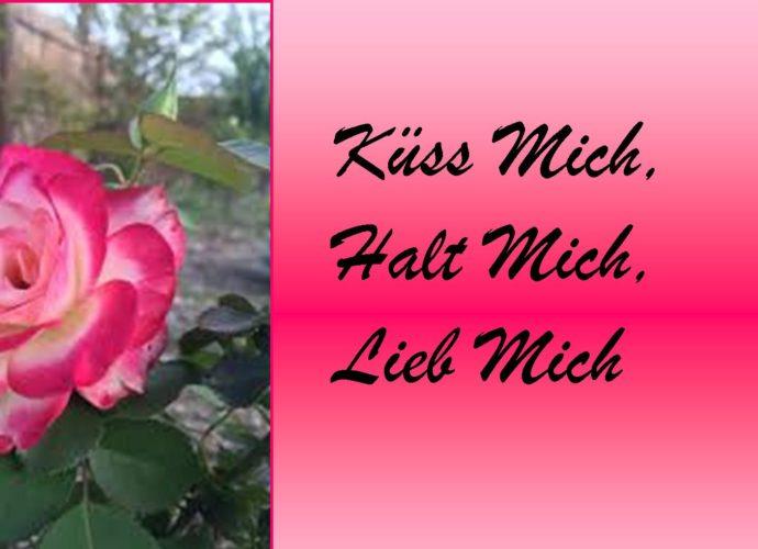 hochzeit-westerwald-küss-mich-halt-mich-lieb-mich